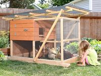i want a CHICKEN COOP!