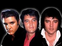 """He was one of a kind. There will never ever be anyone like him! """"Elvis was the king. No doubt about it. People like myself, Mick Jagger and all the others only followed in his footsteps.""""  -Rod Stewart"""