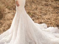 wedding dresses | |