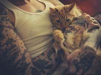 Kitty cat. :3 かわいい猫!