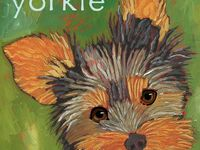 Yorkie related