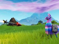 Filename 1920x1080 Llama Rocket Fortnite Wallpaper And Background Png Resolution 1920x1080 File Si Background Images Wallpapers Wallpaper Background Images