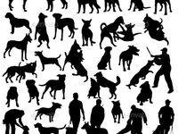Silhouette / Animals / Silhouette / Animals