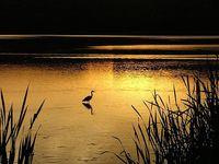 Lake Balaton my region of childhood memories