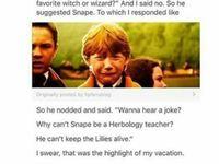 Harry Potter <3
