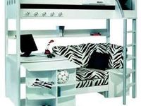 Zebra on pinterest zebra print zebras and salon styling chairs