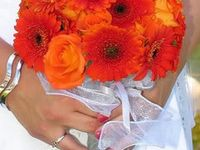 orange wedding theme with turquoise & teal touches a great summer beach theme ideas or to brighten up a UK wedding.