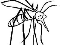 Bugs Mice Bug Me likewise Isolated White Color Spider On Black 454795891 in addition Category In Lubricant And Fuel Products 004 Page 1 Starting N moreover How To Make Your Own Organic Mosquito Repellent together with Mosquitos. on natural insect repellent