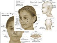 18 Best images about ACUPUNCTURE on Pinterest | Pressure ...