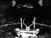 Pagan + Witchcraft