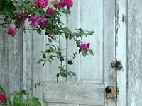 Stunning gardens, porches, & exteriors. Lovely projects & lots of inspiration!