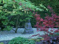 Courtyard garden of tranquility