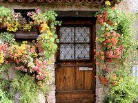 House - Gardening