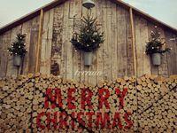 Christmas Love..