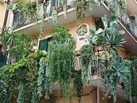 Balconies in green / A collection of green balconies design: take inspiration by them to create your favourite corner.