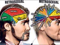 Metrosexuals meaning