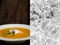 Food: Soup on Pinterest | Soups, Pizza Soup and Pumpkin Soup