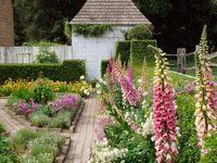 patio's, gardens, outdoors