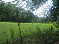 My Someday Farm