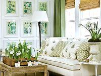 Home Decor & Designing