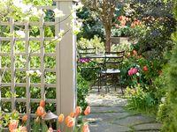 passionate 4 patios