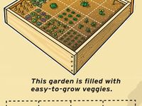 15 best images about square meter gardening on pinterest gardens raised beds and a concept - Square meter vegetable garden ...