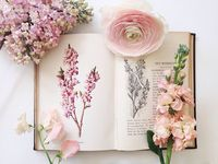 Books & Flowers