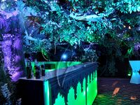17 best images about midsummers night dream decorations on