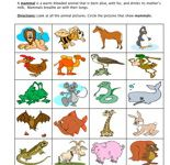 ... science ani... Groupings Of Animals