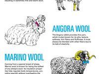 différence laines d d'animaux