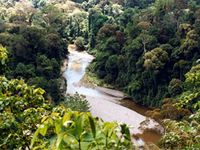 Ecology & Conservation