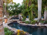 Insanely cool pools / Every day I search through dozens of homes that are all across the price spectrum here in Southeast Florida.  Like home buyers and sellers, I enjoy the decor and the way people put their homes, kitchens, backyards, bathrooms and bedrooms together.  When I see a pool or a series of pools in the same price range I look for common themes and stules