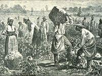500 Idees De Esclavage Esclavage Histoire De L Afrique Abolition Esclavage