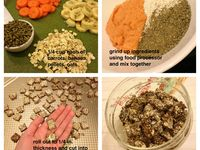1000 Images About Chinchilla Food And Treats On Pinterest Chinchillas Treats And Orange Foods