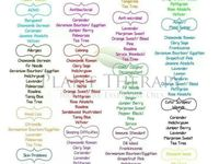 17 Best Images About Essential Oils For Children On