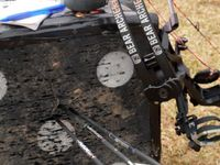 Archery  / Anything bow related