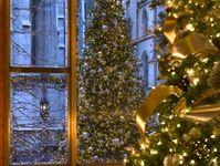 Images about christmas on pinterest felt christmas trees christmas