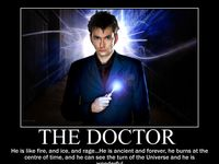 all things the doctor