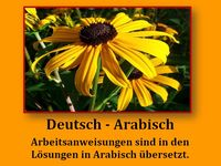 die 112 besten bilder von arbeitsbl tter deutsch arabisch deutsch lernen sprachen und. Black Bedroom Furniture Sets. Home Design Ideas