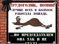 открытка про лошадь которая не стала председателем
