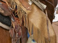 96 Best cowboys images   Cowboys, Country boys, Hot cowboys