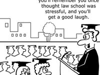 Lawyer Funnies