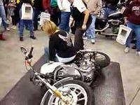 All Things Harley-Davidson