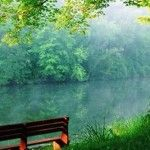 The Effect Of Nature On The Human Mind Green Nature Wallpaper Nature Wallpaper Green Nature