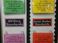 essay on group behavior
