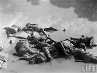 Pictures relevant to Partition of The Indian Subcontinent (1947 &/or 1971) and its effects thereafter.