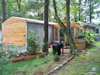 mobile home renvoation