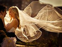 Weddings - Veils