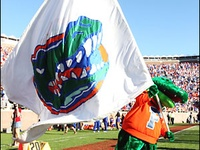 Love to be a gator!