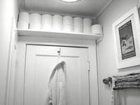 52 Best Bathroom Toilet Images On Pinterest Bathroom